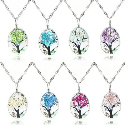Natural Real Pressed Flower Resin Glass Cat Pendant Necklace Women Girls Jewelry