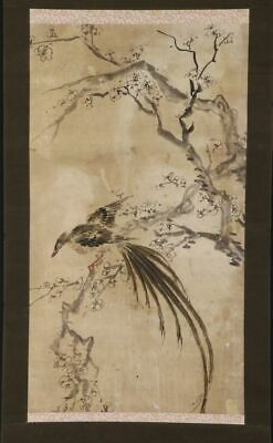 """JAPANESE HANGING SCROLL ART Painting """"Bird and Flower"""" Asian antique  #E9872"""
