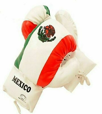 Kids 12 Oz MEXICO Faux Leather Boxing Gloves SPARRING YOUTH PRACTICE TRAINING
