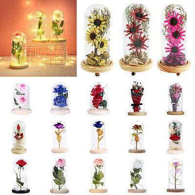 Enchanted Rose Flower In Glass LED Night Lamp Valentine's Day Gift Wedding Decor