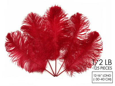 125 Pieces - Red Ostrich Tail Bulk Wholesale Feathers Halloween Centerpiece