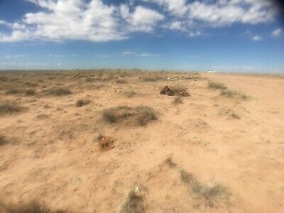 WOW!!! 2.5 Acres of Beautiful Arizona Land for Just $49/month or $1800 CASH!!!