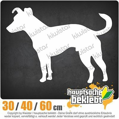 2 x 10cm Jack Russell Dog Sticker Decal Tablet Laptop Car Fun Animal #5988