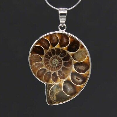Silver Plated Natural Druzy Ammonite Fossil Slice Shell Gemstone Stone Pendant