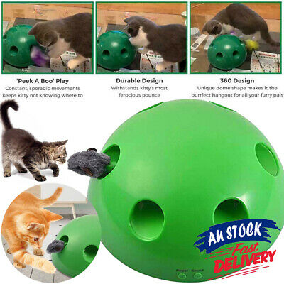 Toy Tease Pet Play Mouse Interactive Toys Cat Motion Electronic ACB#