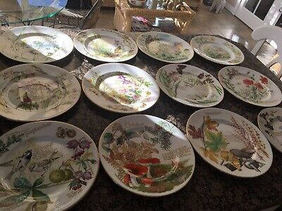 CAVERSWALL BONE CHINA PLATE FULL COLLECTION OF 12 MONTHS!! Excellent Cond