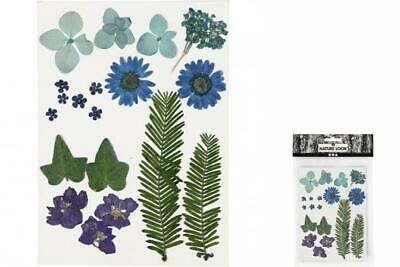Creotime Dried Blue Flowers and Sheets 19 Piece Multicolour
