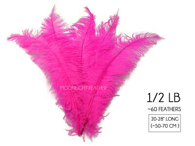 """60 Feathers - 20-28"""" Hot Pink Ostrich Spads Wholesale Feathers Carnival Costume"""