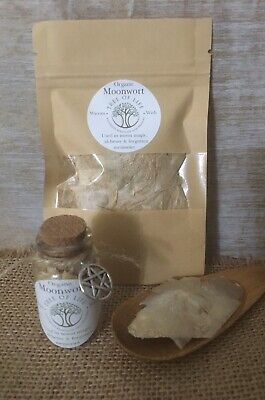 Moonwort extremely rare herb for money & luck spells, Wicca, alchemy 🇦🇺 Grown