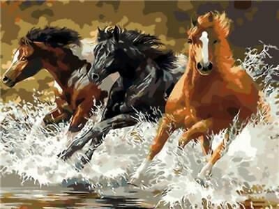 Paint By Number Galloping Horses  40cm * 50cm