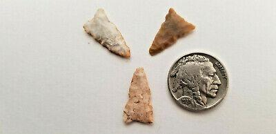 Ancient Authentic Anasazi Point Of The Pines Arrowheads Points Northern Arizona