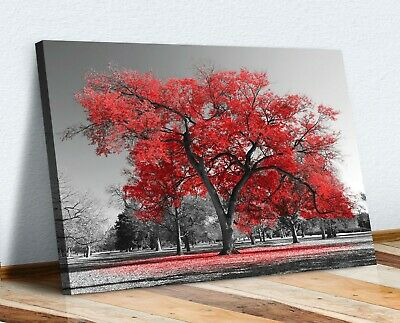 Large Tree Red Leaves Black White Canvas Wall Art Picture Print 30mm Deep