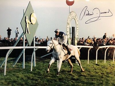 Jockey Richard Dunwoody signed Desert Orchid large photo UACC DEALER SIGNING!