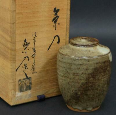 Tea Caddy Ceremony Chaire Shigaraki-ware Sado Japanese Traditional Crafts t703