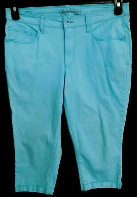 Faded glory sky blue embroidered belt loop women's plus size capri pant