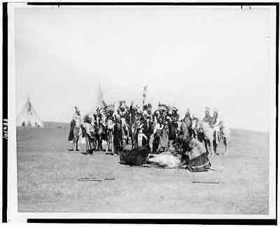 """8"""" x 10"""" Photo 1890 Ponca Indian scouts skinning a buffalo, 101 Ranch"""