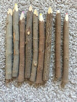 Thai Tree Branch Twig Pencil Bundle 9 Large Size - Mixed Colours