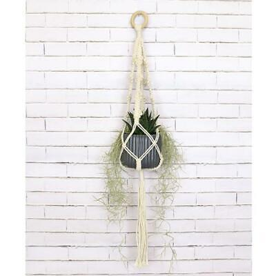 Birch Macrame Plant Pot Hanging Kit - 4 Picots -  Diy Decorative Knotting Kit