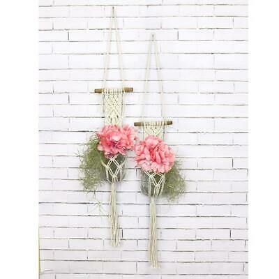 Birch Macrame Plant Pot Hanging Kit - Mini -  Diy Decorative Knotting Kit