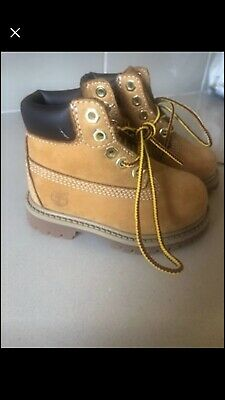 Toddler Timberland Shoes 5w