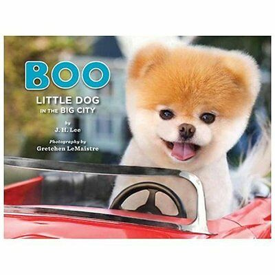 Boo: Little Dog in the Big City by Lee, J.H.