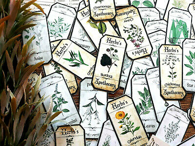 50 Vintage Herbal Apothecary Witch Spell Natural Herb Junk Journal Apothecary