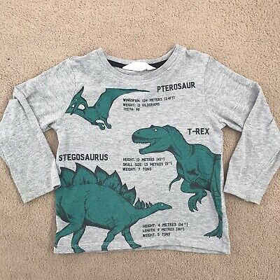 Boys 2-4 Years Grey Dinosaur Top From H&M In Great Condition