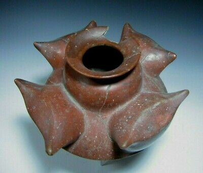RARE Pre Columbian West Mexico Colima Pottery Maguey Leaf Vessel ca. 500 BC