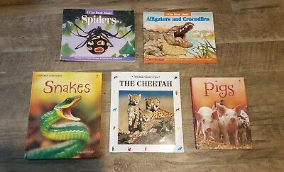 Lot 5 Childrens Kids Books Early Readers Scholastic Learn to Read Animals