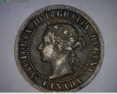 1895 Canada Large Cent (171112-164)