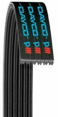 Dayco Products 5061038 Serpentine Belt  12 Month 12,000 Mile Warranty