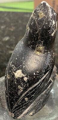 Old Indian Carved Black Stone Bird Artifact W/Gold Chunks Friend Found N Ga 1893