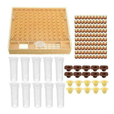 120pcs Bee Cell Cups Queen Rearing System Beekeeping Tool Cultivating Box NI5L