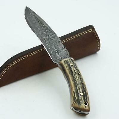 Hunting Knife, Handmade Knife, Damascus Blade, Stag Handle With Leather Sheath