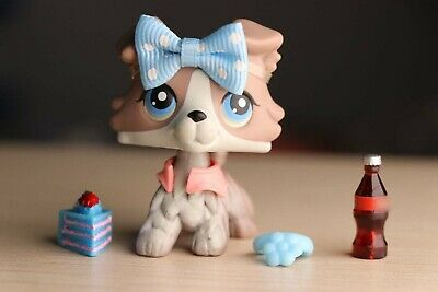 lps Collie #67 Gray and White Dog with Blue Eyes lps Figure with lps Accessories