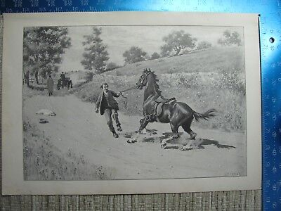 """A B Frost """"WHOA THERE"""" 1904 DRAWING of HORSE & RIDER ENCOUNTER AUTOMOBILE PRINT"""