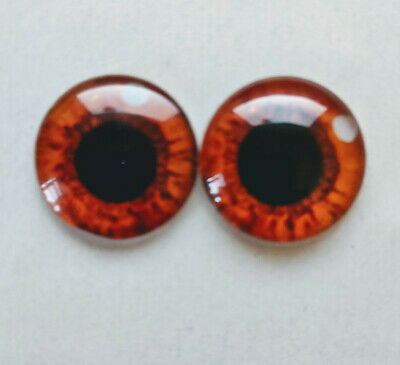 Brown/ amber glass cabachon eyes great for taxidermy, needle felting, toy making