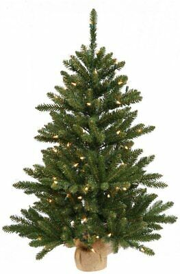 Vickerman B160443 Pine Artificial Christmas Tree 484 PVC tips & 150 Dura Lit 42""