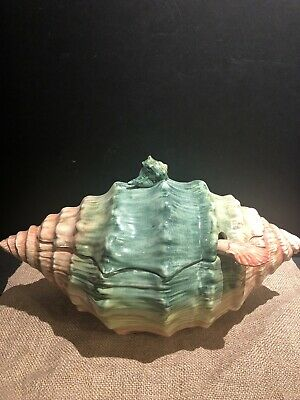 Vintage Conch Shell Soup Tureen