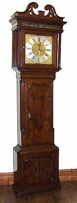 ~ Antique Brass Dial Burr / Pollard Oak Longcase Grandfather Clock MOSS FRODSHAM