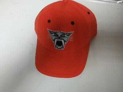 Brand New Arctic Cat Orange Cathead Baseball Cap, Adjustable Fit 4278-406