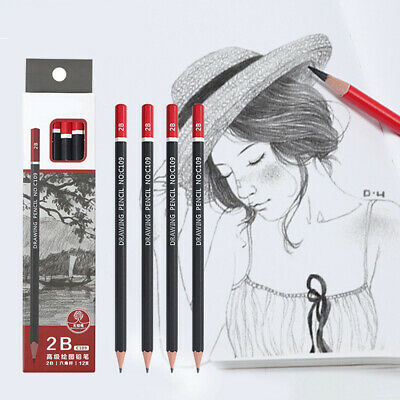 12Pcs Graphite Sketching Pencils Drawing Pencil Set School Student Painting Tool