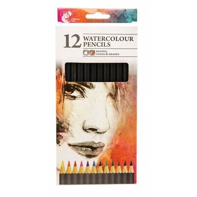 12 Watercolour Artist Pencils For Sketching Drawing Art Painting Water Colour