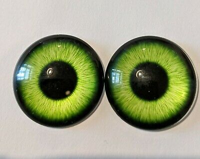 Green glass cabachon eyes great for taxidermy, needle felting, toy making