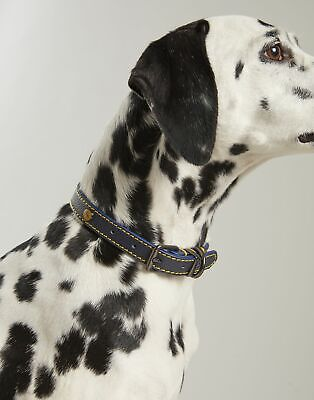 Joules Home Leather Pet Collar - FRENCH NAVY