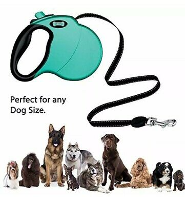 Retractable Dog Leash 16 Feet  Ruff 'N Ruffes