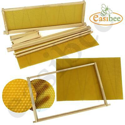 Dadant Beehive Wired Wax Foundation Sheets and Frames Beekeeping Easibee