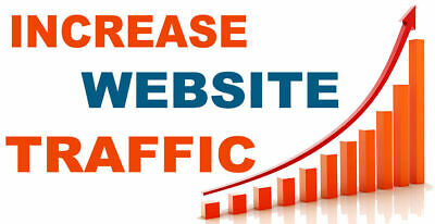 60,000 Real Website Visitors