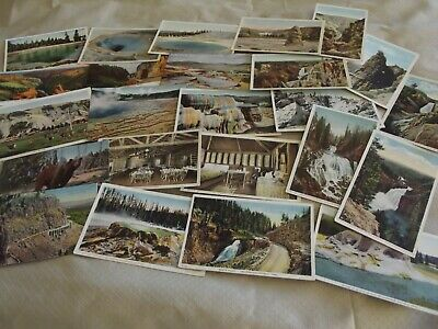 Yellowstone National Park-Scenic Views-Springs Etc.-Vintage Postcard Lot of 30