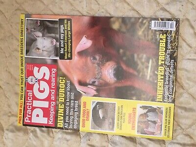 Practical Pigs Winter Issue 33